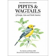 Pipits and Wagtails of Europe, Asia and North America by Per Alstrom