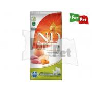 Dog Grain Free vaddisznó&alma sütõtökkel adult medium/maxi 12kg