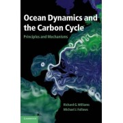 Ocean Dynamics and the Carbon Cycle by Richard G. Williams