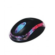 Intex Optical Mouse Little Wonder Black USB with 1 year manufacturer warranty
