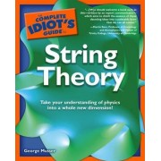Complete Idiot's Guide to String Theory by George Musser