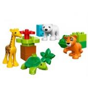 LEGO® DUPLO® 10801 - Jungtiere