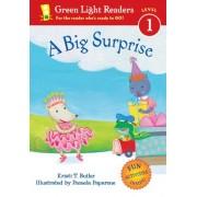 Big Surprise by T. Kristi Butler