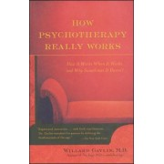 How Psychotherapy Really Works by Willard Gaylin