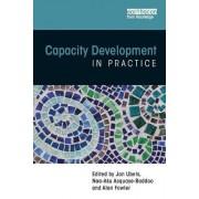 Capacity Development in Practice by Jan Ubels