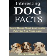 Interesting Dog Facts: Learn Things about Your Canine Pals That You Never Knew