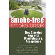 The Smoke-Free Smoke Break by Pavel G. Somov