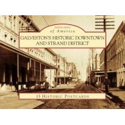 Galveston's Historic Downtown and Strand District by Denise Alexander