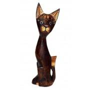 Orientalny kot średni Indonezja