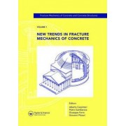 New Trends in Fracture Mechanics of Concrete: Proceedings of the 6th International Conference on Fracture Mechanics of Concrete and Concrete Structures, Catania, Italy, 17-22 June 2007 Volume 1 by Alberto Carpinteri