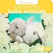 Touch and Feel: Baby Animals by Rachael Hale