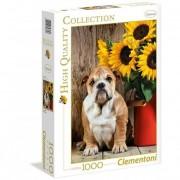 Clementoni - puzzle 1000 hqc - the bulldog