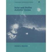 Solar and Stellar Activity Cycles by Peter R. Wilson