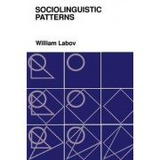 Sociolinguistic Patterns by William Labov