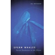 Sperm Whales by Hal Whitehead