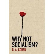 Why Not Socialism? by G. A. Cohen