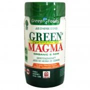 Green Magma poudre de jus d'herbe d'orge Celnat 320 comprimés