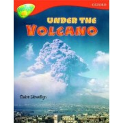 Oxford Reading Tree: Level 13: Treetops Non-Fiction: Under the Volcano by Mick Gowar