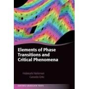 Elements of Phase Transitions and Critical Phenomena by Hidetoshi Nishimori
