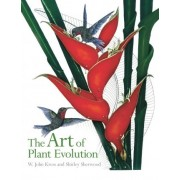 The Art of Plant Evolution by Aileen O'Riordan