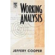 Working Analysis by Jeffery M. Cooper