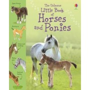 Little Book of Horses and Ponies by Sarah Kahn