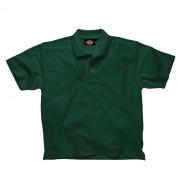 Dickies Polo-Shirt flaschengrün Gr. M