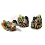 Trzy orientalne kaczki Indonezja