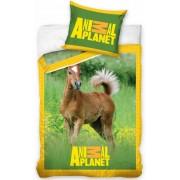 Dekbed Animal Planet paard: 140x200/70x80 cm