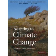 Adapting to Climate Change by W. Neil Adger
