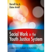 Social Work in the Youth Justice System: A Multidisciplinary Perspective by Darrell Fox