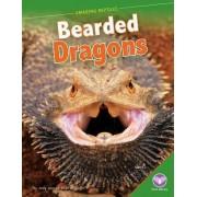 Bearded Dragons by Jody Jensen Shaffer