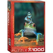 EuroGraphics Red Eyed Tree Frog 1000 Piece Puzzle by EuroGraphics