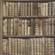 Tapet Vintage Carti Biblioteca Nuc Oxford II