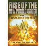 Rise of the New World Order 2: The Awakening