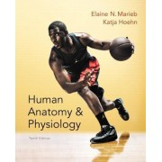 Human Anatomy & Physiology by Elaine N. Marieb