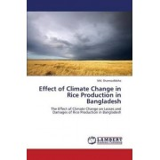 Effect of Climate Change in Rice Production in Bangladesh by Shamsuddoha MD