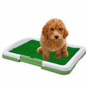 Sanitario Canino Puppy Potty Pad grama artificial CBR01119