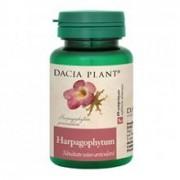 Harpagophytum Dacia Plant 60cpr