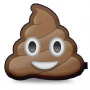 Almofada Emoji Cocô Cocôzinho Feliz Emoticon