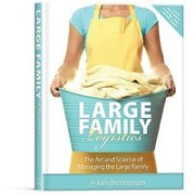 Large Family Logistics: The Art and Science of Managing the Large Family