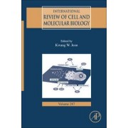 International Review of Cell and Molecular Biology: Volume 287 by Kwang W. Jeon
