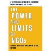 The Power and Limits of NGOs by Sarah E. Mendelson