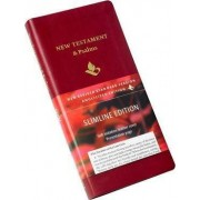 NRSV New Testament and Psalms NR012:NP Burgundy Imitation Leather by Baker Publishing Group