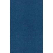 The Development of Scientific Thinking Skills: Volume V by Harry Beilin