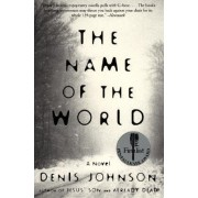 The Name of the World by Denis Johnson