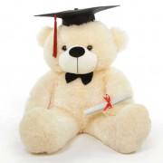 Peach 3 Feet Big Teddy Bear with a Graduation Cap and a Scroll