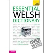 Essential Welsh Dictionary: Teach Yourself by Edwin C. Lewis