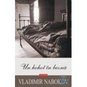 Un hohot in bezna - Vladimir Nabokov