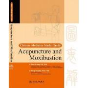 Chinese Medicine Study Guide by Zhao Ji-Ping